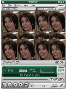 TV_plugin_for_Winamp